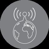 grey_globe_icon