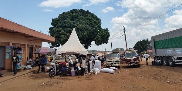 UgandaMarket2_600_300